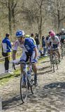 The Cyclist Zurlo Federico in The Forest of Arenberg- Paris Roubaix 2015 royalty free stock images