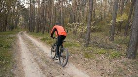 Cycliste dans la forêt banque de vidéos