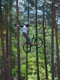Cycliste de cascade de style libre dans le plein vol très haut avec des arbres à l'arrière-plan Photographie stock
