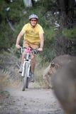 Cycliste de montagne dans le chemin de Cyclocross Photo stock