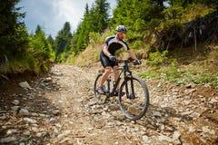 Cycliste de montagne sur des traînées Photo stock