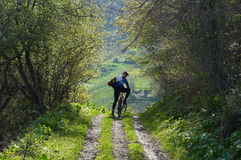 Cycliste de montagne sur la route rurale Image libre de droits