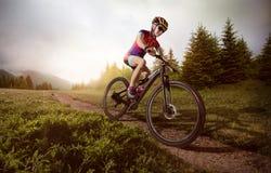 Cycliste de vélo de montagne Photographie stock