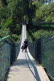 Cycliste marchant sur une passerelle au-dessus de rivière de San, Pologne photographie stock libre de droits