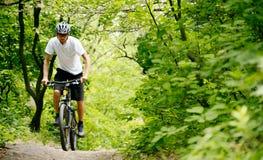 Cycliste montant le vélo sur la traînée dans la forêt photo stock