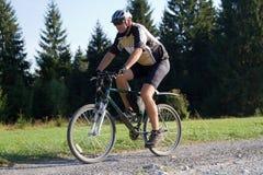 Cycliste sur le journal de forêt photos libres de droits