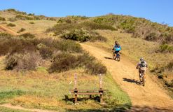 Cyclistes de montagne sur une traînée en Californie du sud photo stock
