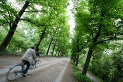 Cyclistes en vert Image libre de droits