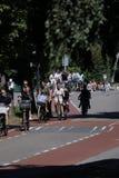 Cyclistes sur la ruelle de bycicle dans Aalsmeer, Pays-Bas photos libres de droits