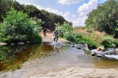 Cyclistes sur le journal de bicyclette photographie stock