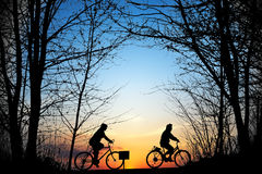 Cyclists Stock Image