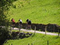 Cyclists #2. Cyclists on a Swiss hillside in early summer / late spring stock photo
