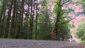 Cyclists Approach the Finish of the Tour of Britain. Cyclists approach Whinlatter Forest and the finish of Stage 6 of the OVO Energy Tour of Britain in Cumbria stock footage