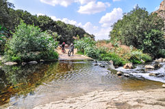 Cyclists on the bicycle trail. Two cyclists prepairing to cross the river with mountain bikes Royalty Free Stock Image