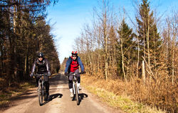 Cyclists or bikers on bike path. Sport activity. Two cyclists or bikers riding along a forest dirt bicycle path. MTB bikes royalty free stock photos