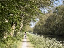 Cyclists in canal du midi. Near saint Martin Lalande Royalty Free Stock Image