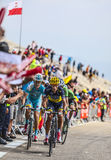 Cyclists Climbing Mont Ventoux. Mont Ventoux, France- July 14 2013: Group of cyclists including the Czech Roman Kreuziger (Team Saxo-Tinkoff) and the Danish Stock Photo