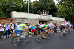 Cyclists competition Stock Image