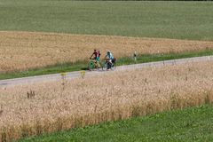 cyclists in a distance view on a summer sunny day royalty free stock images