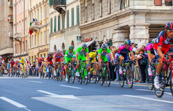 Cyclists, Giro d'Italia Royalty Free Stock Image