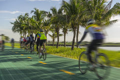 Cyclists. Group of cyclists on the green bicycle way Royalty Free Stock Image