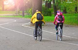 Cyclists man and woman in the park. Healthy lifestylr concept stock image