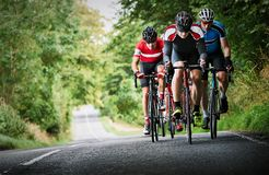 Cyclists racing on country roads. On a sunny day in the UK royalty free stock photos