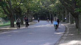 Cyclists ride in Vondelpark stock footage