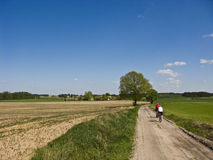 Cyclists in spring or summer dirt path Royalty Free Stock Image