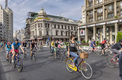 Cyclists on street. Cyclists on Victoria street in Bucharest on September 20, 2014 in Bucharest, Romania royalty free stock images