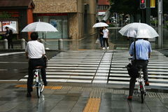Cyclists Using Umbrellas at a crossing in Japan Stock Images