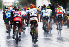 Cyclists from various teams cycle Royalty Free Stock Images