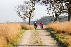 Cyclists in the woods, Netherlands Stock Photo