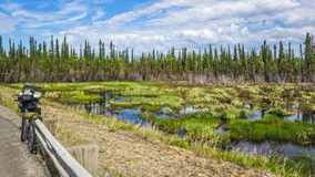 Cyclling Alaska. Traveling with a bicycle through Alaska highway amidst tundra and pine forest Stock Photo