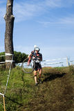 Cyclo cross competitor in a race Royalty Free Stock Images