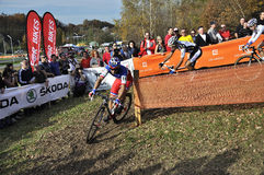 Cyclo Cross UCI Czech Republic 2013 Stock Images
