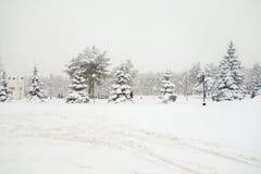 The cyclone Daniella in Brisov-city Stock Image
