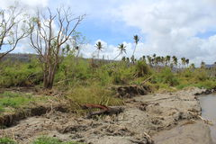 Cyclone pam in Vanuatu. Vanuatu damage after cyclone Pam hit Royalty Free Stock Images
