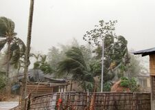 Free Cyclone Strom Winds Palm Trees, Thunderstorm India, Assam, Royalty Free Stock Photography - 183297097