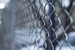 Cyclone wire fencing. Photograph of a cyclone wire fencing and a blurred background Stock Images