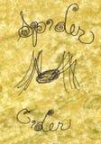 cydru ilustraci pająk Fotografia Royalty Free