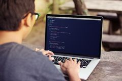 Cyfrowanie i programowanie dla projekta pojęcia sieć rozwoju i sieci używać laptop, komputer/ zdjęcia royalty free