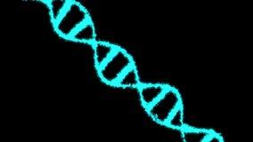 Cyfrowego błękita Holograficzny DNA Wirujący DNA pasemka gromadzić od indywidualnych elementów target499_1_ genetyczny ilustracji