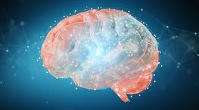 Cyfrowego 3D projekcja ludzkiego mózg 3D rendering ilustracja wektor