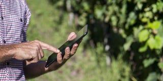 Cyfrowego rolnik sprawdza jego śródpolnego obrazy royalty free