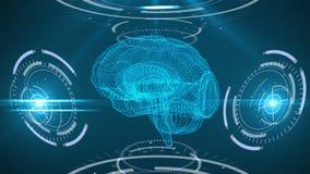 Cyfrowego skanerowanie ludzki mózg Abstrakcjonistyczny tło z plexus, hud Pętli animacja ilustracji