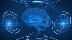 Cyfrowego skanerowanie ludzki mózg Abstrakcjonistyczny tło z plexus, hud Pętli animacja royalty ilustracja