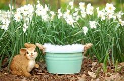 Cyfrowej fotografii tło wiosna kwiatu ogród I wiadra wsparcie Obraz Stock
