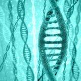 Cyfrowej ilustraci DNA struktura Zdjęcie Royalty Free