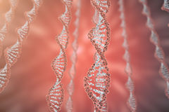 Cyfrowej ilustraci DNA struktura w colourful tle Medycyny pojęcia 3d rendering Zdjęcia Stock